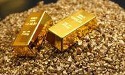 Giá vàng hôm nay 5/8/2020: Giá vàng SJC \