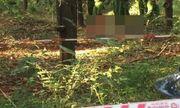 Tin tức pháp luật mới nhất ngày 6/8/2020: Thiếu nữ bị hiếp dâm trong khu rừng vắng