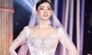 Đại gia Minh Nhựa chi 405 triệu mua bộ váy do Hoa hậu Lương Thuỳ Linh trình diễn