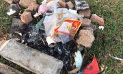 Phường Long Biên - Quận Long Biên - Hà Nội: Thường xuyên ra quân dọn sạch rác thải khu vực bãi bồi ven sông