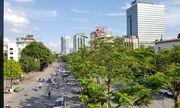 """""""Xanh mắt"""" với những con đường phủ đầy cây tại Hà Nội"""