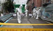 Tình hình dịch Covid-19 ngày 16/8: Hàn Quốc ghi nhận số ca nhiễm kỷ lục, Nga bắt đầu sản xuất vaccine