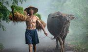Cảnh đồng quê Việt Nam lên báo nước ngoài, góp mặt trong loạt ảnh nét đẹp văn hóa độc đáo nhất trên thế giới