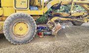 Tin tai nạn giao thông mới nhất ngày 21/8/2020: Nam sinh tử vong thương tâm dưới gầm xe ủi
