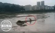Nhảy sông tự tử vì tình rồi hối hận, cô gái bám khúc gỗ lênh đênh suốt 6 tiếng trước khi được giải cứu