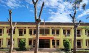 Trường THCS ở Nghệ An chặt trụi hàng loạt cây xanh: Lãnh đạo sở GD&ĐT nói gì?