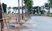 """Mê Linh: Dự án khu nhà ở Minh Đức rao bán """"lúa non"""", chủ đầu tư không biết?"""