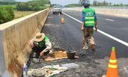 Cao tốc Đà Nẵng - Quảng Ngãi trị giá hơn 34 nghìn tỷ đồng