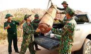 Quảng Ninh: Phát hiện bom nặng 450kg trong lúc san lấp mặt bằng