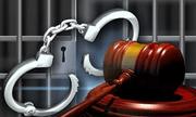 Nữ trưởng phòng ngân hàngchiếm đoạt 8,2 tỷ đồng của khách hàng lĩnh 12 năm tù