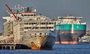 Nhật Bản: Chìm tàu chở 43 thủy thủ và gần 6.000 gia súc