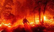 Chùm ảnh: Thảm họa cháy rừng ở California, diện tích rừng bị phá hủy bằng 10 thành phố New York
