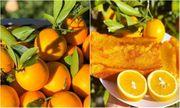 Nhà nhiều cam, tôi làm món bánh thơm ngon cho cả nhà thưởng thức