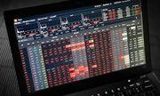 Thao túng giá cổ phiếu, một cá nhân thu lợi bất chính hơn 3,3 tỷ đồng