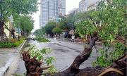 Nhiều tỉnh miền Trung xuất hiện gió lốc, hàng chục ngôi nhà tốc mái vì ảnh hưởng của bão số 5
