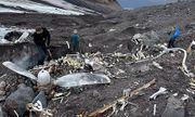 """Sông băng tan chảy, """"pháo đài bay"""" của Mỹ trong Thế chiến II lộ diện sau 76 năm"""