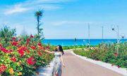 """""""Du hí"""" Quy Nhơn: nhất định phải check-in con đường hoa ven biển vạn người mê"""