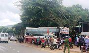 Lâm Đồng: Xe khách mất lái, lao thẳng vào xe máy chạy ngược chiều