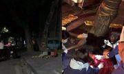 Hà Nội: Xe máy chạy tốc độ cao đâm thẳng vào gốc cây, 2 cô gái trẻ thương vong