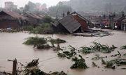 NHNN yêu cầu các ngân hàng xem xét miễn giảm lãi vay, hỗ trợ người dân bị thiệt hại do mưa lũ