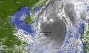 Bão số 8 mạnh lên cấp 13, cách quần đảo Hoàng Sa 300km