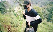 Hà Anh Tuấn phủ xanh đồi trọc với gần 2.000 cây rừng để hỗ trợ chống lũ