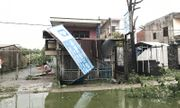 Đà Nẵng: Đường phố ngổn ngang, bờ biển tan hoang sau bão số 9