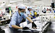 Lợi nhuận 9 tháng đầu năm sụt giảm, Dệt May Việt Nam vẫn trả được nghìn tỷ nợ vay