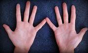 Bàn tay có 5 đặc điểm này bảo sao suốt đời chỉ làm