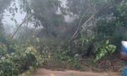 Quảng Ngãi xác minh thông tin người dân mất tích do sạt lở núi trong đêm