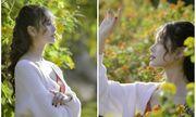 Nhan sắc ngọt ngào của nữ sinh học viện Tài chính giữa rừng hoa dã quỳ