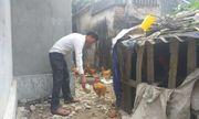 Hải Phòng: Tiền hỗ trợ gia cầm chết vì trận bão năm 2012 vẫn nằm trong túi thủ quỹ xã