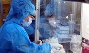 Việt Nam phát hiện ca mắc COVID-19 đầu tiên nhiễm chủng virus Corona mới của Anh