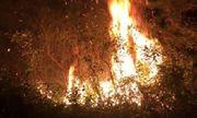 Hà Nội: Huy động hơn 1.100 người dập tắt cháy rừng cạnh trường bắn Sóc Sơn