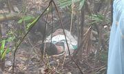 Vụ thi thể thanh niên trên bán đảo Sơn Trà: Nạn nhân bỏ lại xe máy, sổ khám bệnh