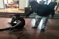 Xã hội - Thanh Hóa: 20 đối tượng truy sát và nổ súng bắn trọng thương một thanh niên