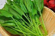 Sức khoẻ - Làm đẹp - Phụ nữ nên ăn rau chân vịt để bổ máu? Nếu bạn nghĩ như vậy thì nhầm to!
