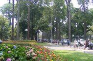 Xã hội - TP Hồ Chí Minh phấn đấu trở thành một thành phố xanh
