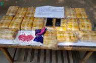 Pháp luật - Bắt giữ hai đối tượng buôn bán trái phép 120.000 viên ma túy tổng hợp