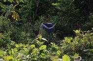 Tin trong nước - Vụ 2 thi thể giấu trong bê tông ở Bình Dương: Hé lộ về danh tính nạn nhân