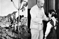 Xã hội - Chủ tịch Hồ Chí Minh với sự nghiệp Trồng cây và Trồng người
