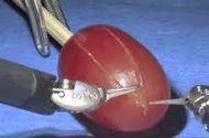 Công nghệ - Robot phẫu thuật gây kinh ngạc khi mổ một quả nho chuẩn xác đến từng chi tiết