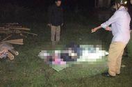 Tin trong nước - Nghệ An: Ô tô lao xuống đập nước trong đêm, tài xế bị nước cuốn tử vong