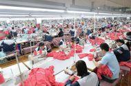 Kinh doanh - May Sông Hồng dự chi khoảng 225 tỷ đồng tạm ứng cổ tức bằng tiền mặt cho cổ đông
