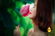 Xã hội - Thuốc tăng cường nội tiết tố nữ từ 5 loại thực phẩm