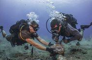 Internet & Web - Triển khai tuyến cáp quang biển có dung lượng băng thông gấp 3 lần cáp APG
