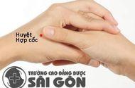 """Xã hội - Bác sĩ Dược Sài Gòn chia sẻ mẹo sống lâu nhờ """"ngón tay"""" của người Nhật"""