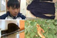 An ninh - Hình sự - Vụ vợ bị sát hại, bỏ lại 3 con thơ cho chồng mù lòa: Nam sinh 16 tuổi từng đột nhập nhà nạn nhân