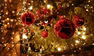 Thông tin tag Noel