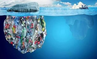 Sức khoẻ - Làm đẹp - Thông tin chấn động: Mỗi tuần một người đang ăn số nhựa bằng chiếc thẻ tín dụng